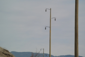 Poles in place for the 130 KV line from the Merritt Substation to the Highland Valley Photo KDG