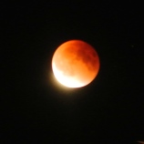 Moon over Merritt 27th September File Photo KDG Blood moon tonight eclipse down under....